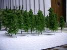 Tree\'s in progress