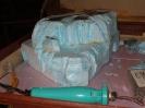 Suitcase Layout Status Jan 2009