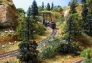 Back Woods on the Layout to Iowa CONTEST