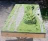New Yard Module