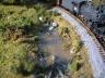 Track side pond.